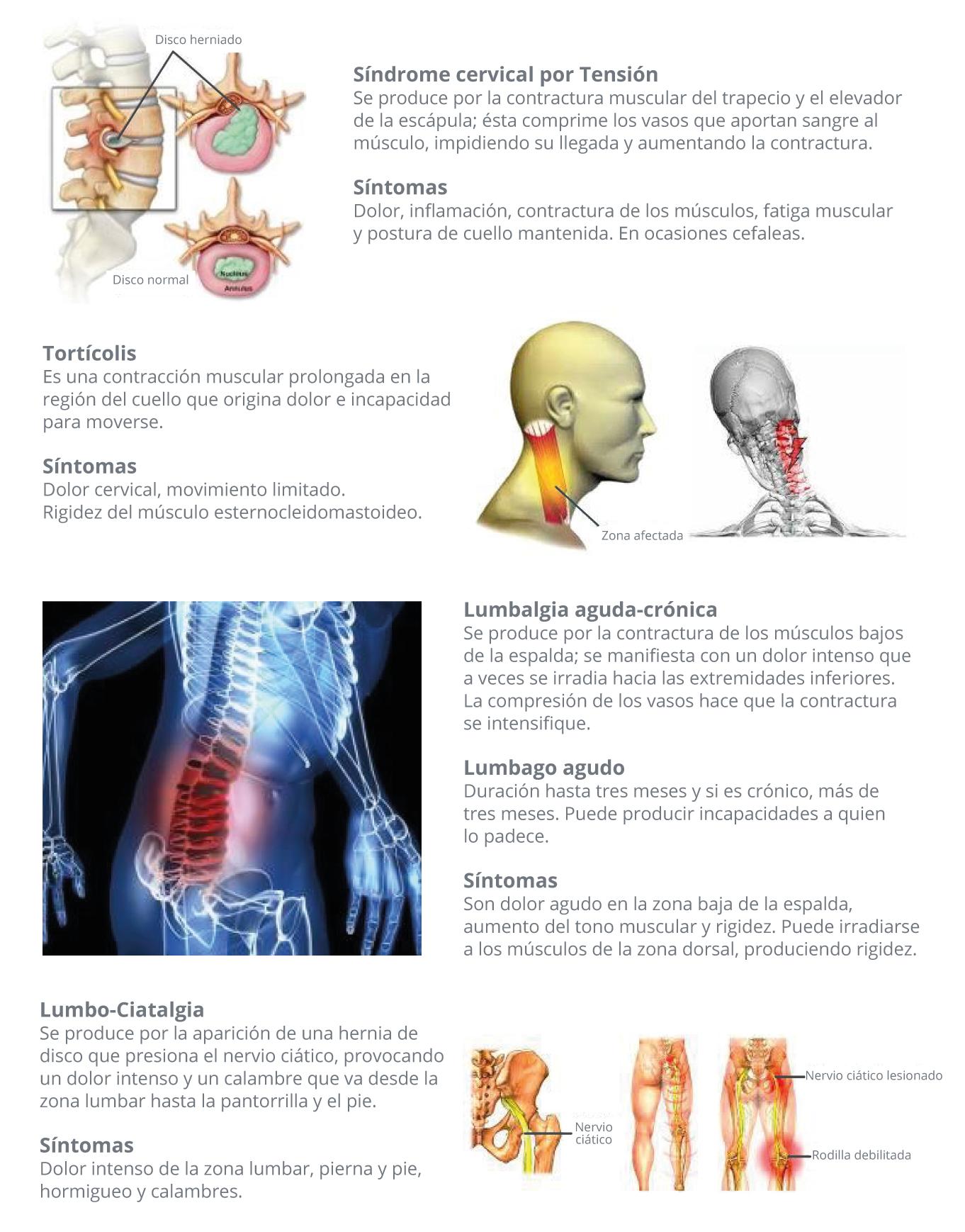 Riesgos - Salud Laboral y Discapacidad